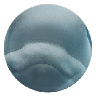 Sweet Beluga Whale Plate