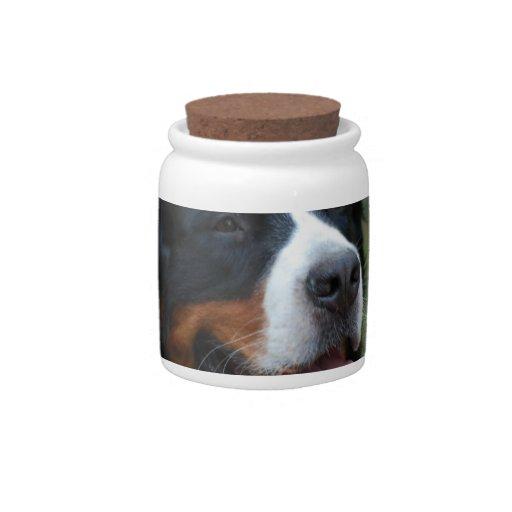 Sweet Bernese Candy Jar