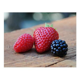 Sweet Berries Postcard