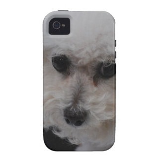 Sweet Bichon Frise Case-Mate iPhone 4 Cover