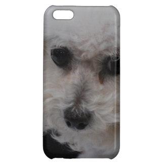Sweet Bichon Frise iPhone 5C Case
