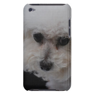 Sweet Bichon Frise iPod Touch Case-Mate Case
