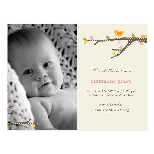 Sweet Birdie Baby Birth Announcement Postcards