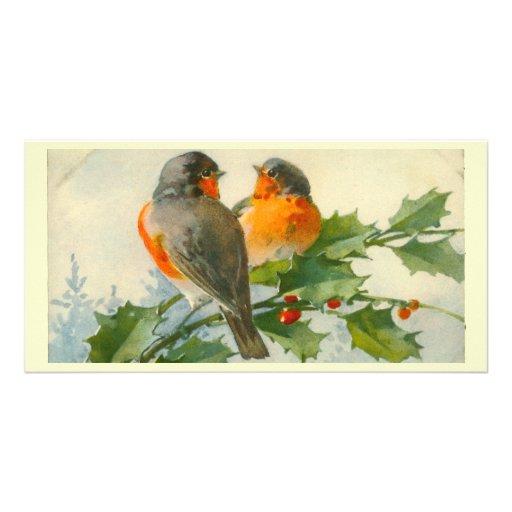 Sweet Birds Vintage Postcard Print Photo Card