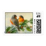 Sweet Birds Vintage Postcard Print Postage Stamps