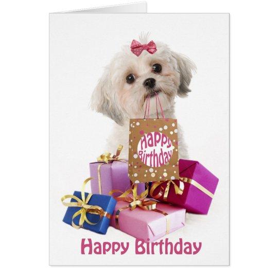 Similiar Happy Birthday Shih Tzu Inu Keywords