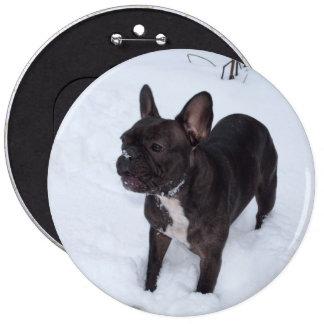 Sweet Black French Bulldog Likes Snow Button