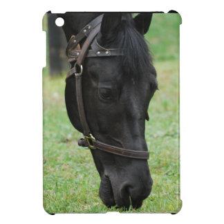 Sweet Black Horse iPad Mini Covers