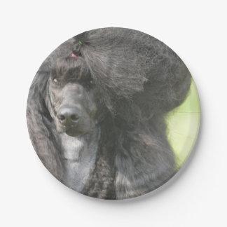Sweet Black Poodle Paper Plate