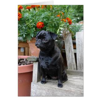 Sweet Black Pug Note Card - blank