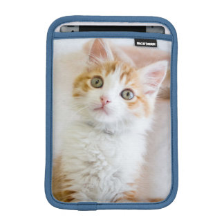 Sweet Blue Eyed Kitty Sleeve For iPad Mini