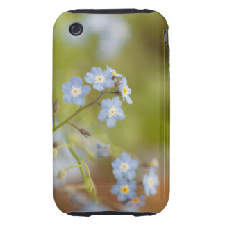 Sweet Blue Flowers iPhone 3 Tough Case
