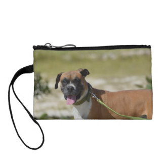 Sweet Boxer Coin Wallet