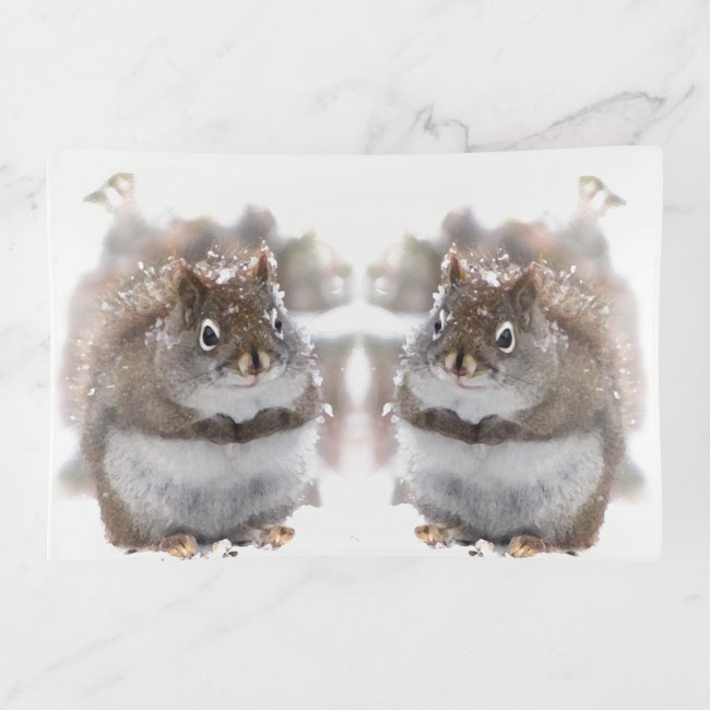 Sweet Brown and White Squirrels Trinket Tray