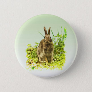 Sweet Brown Bunny Rabbit in Green Grass Button