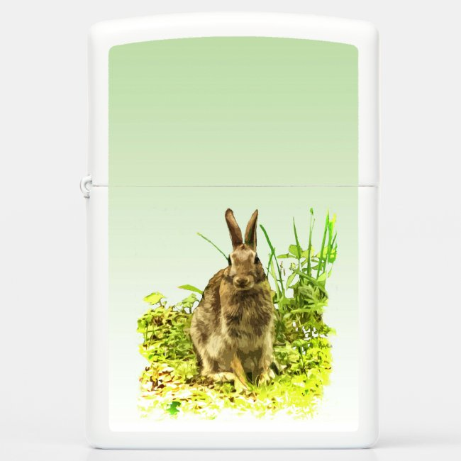 Sweet Brown Bunny Rabbit on Green Background