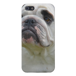 Sweet Bulldog Cover For iPhone SE/5/5s
