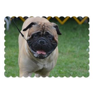 Sweet Bullmastiff Personalized Invites