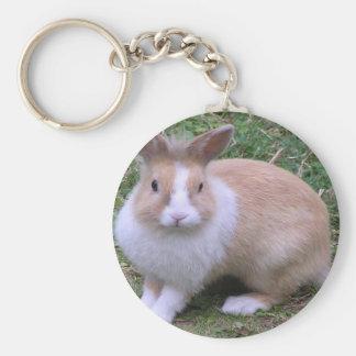 sweet bunny keychain