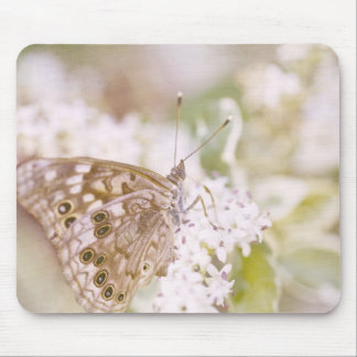 Sweet butterfly love mouse pad
