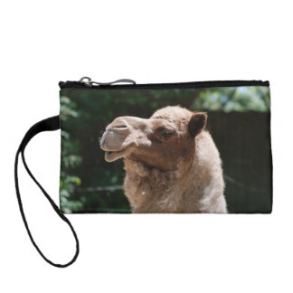 Sweet Camel Coin Purse