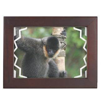 Sweet Capuchin Monkey Keepsake Box