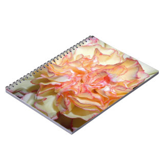 Sweet Carnation Delicate Floral Notebook