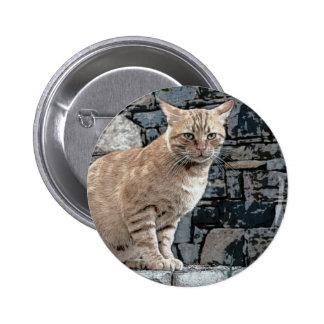 Sweet Cat Button