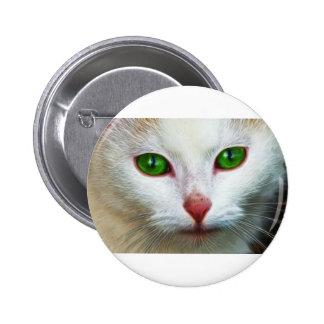 Sweet Cat Pins