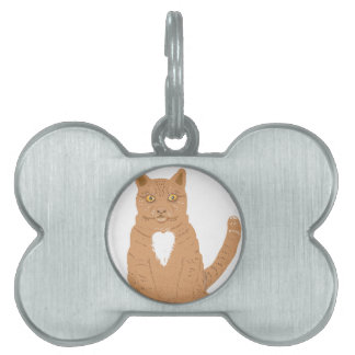 Sweet Cat on almost everythiing imaginable. Pet ID Tags
