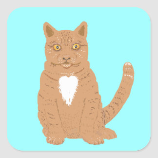 Sweet Cat on almost everythiing imaginable. Square Sticker