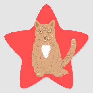 Sweet Cat on almost everythiing imaginable. Star Sticker
