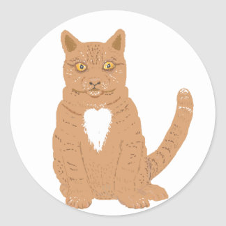 Sweet Cat on almost everythiing imaginable. Round Stickers