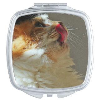 Sweet Cat Sammi Lovely Cute Photograph Vanity Mirror
