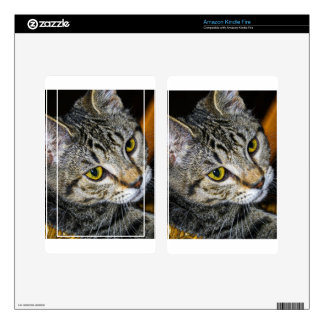 Sweet Cat Skin For Kindle Fire