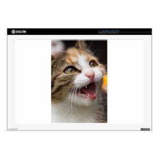 """Sweet Cat 17"""" Laptop Skin"""