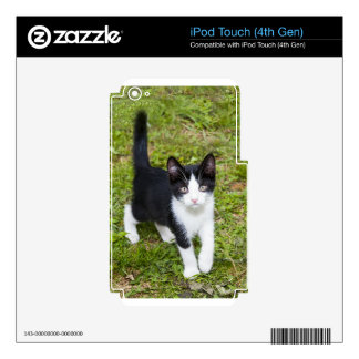 Sweet Cat Decal For iPod Touch 4G