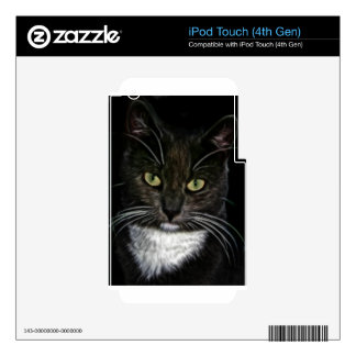 Sweet Cat iPod Touch 4G Decals