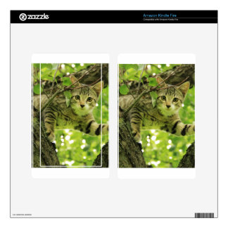 Sweet Cat Skins For Kindle Fire