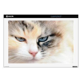 Sweet Cat Laptop Decal