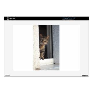 """Sweet Cat 15"""" Laptop Skin"""