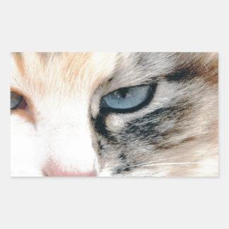 Sweet Cat Sticker