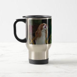 Sweet Cavalier King Charles Spaniel Mugs