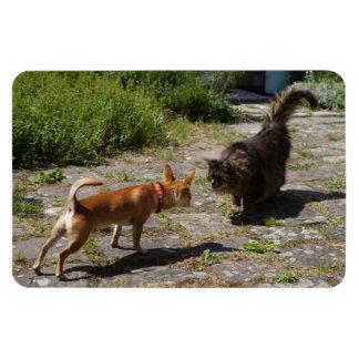 Sweet Charlie Chihuahua Rectangular Photo Magnet