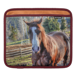 Sweet, Cheeky Chestnut Horse Equine Photo iPad Sleeve