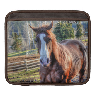 Sweet, Cheeky Chestnut Horse Equine Photo Sleeve For iPads