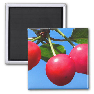 Sweet Cherries 2 Inch Square Magnet