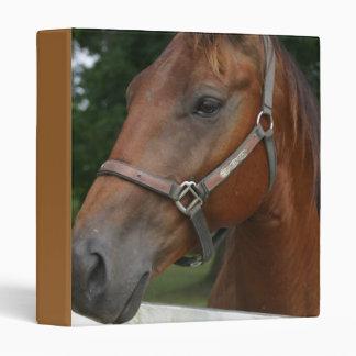 Sweet Chestnut Horse Binder