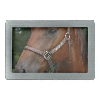 Sweet Chestnut Horse Buckle Belt Buckle