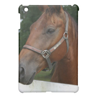 Sweet Chestnut Horse iPad Case